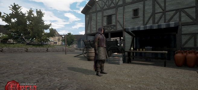 A character wearing a hooded cloak in Chronicles of Elyria.