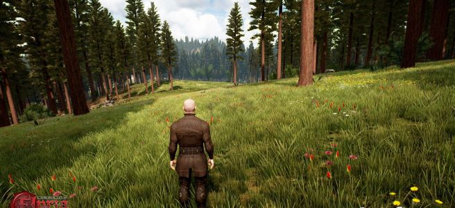 A boreal forest in Chronicles of Elyria.